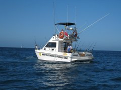 fishing-charter-boat-2.jpg