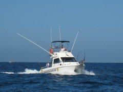 fishing-charter-boat-4.jpg