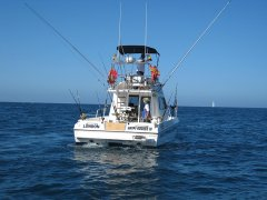 fishing-charter-boat-5.jpg